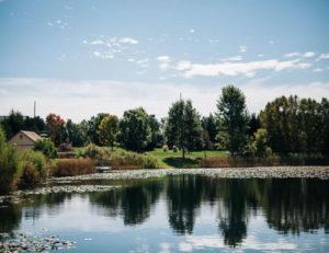 mohican-gardens-lake